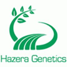 Picture for manufacturer Hazera Genetics