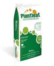 Picture of Plantleaf